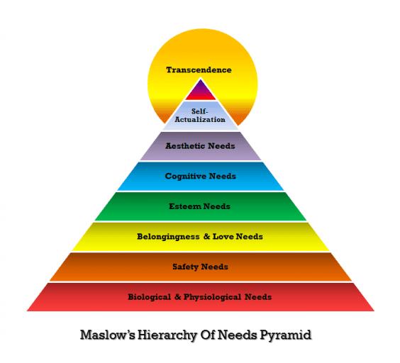 Human Needs – the Influence of Social Templates