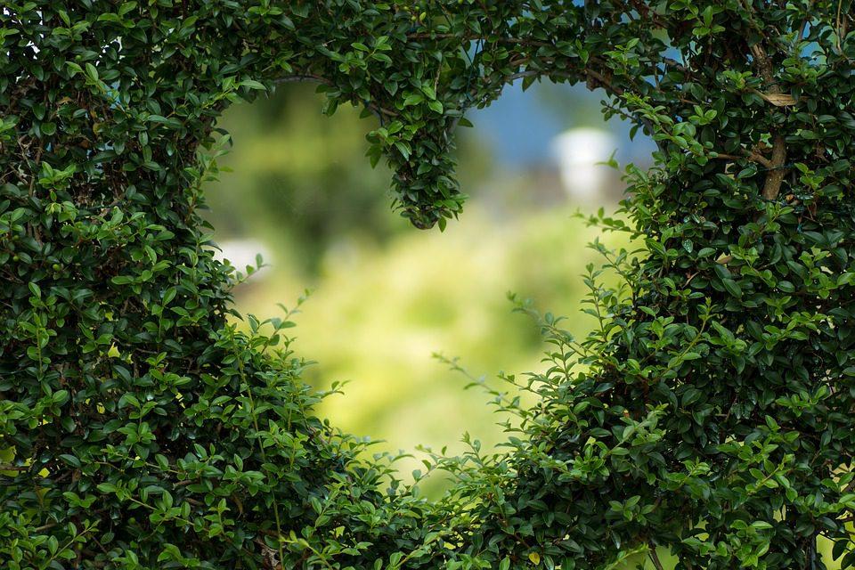 Valentines Day Around the World