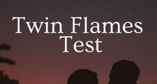 Twin Flames Test